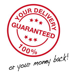 100% GUARANTEED DELIVERY
