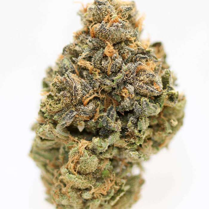 Cherry Pie Kush For Sale